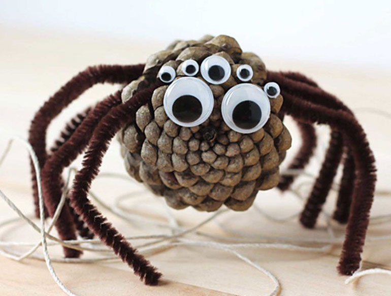 2. Pinecone spiders
