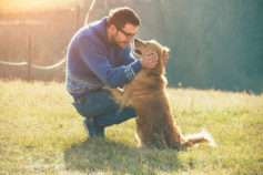 The loyalty of dogs told through 20 incredible stories